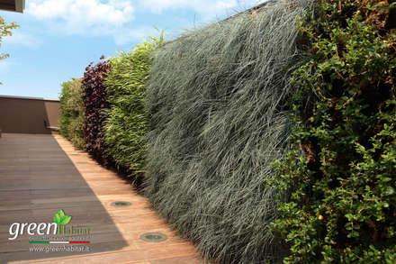 TERRAZZO GIARDINO VERTICALE: Terrazza in stile  di Green Habitat s.r.l.