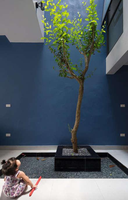 สวนหิน by Công ty TNHH Thiết Kế Xây Dựng Song Phát