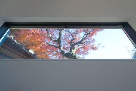 アトリエキノコ의  창문