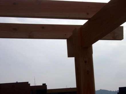Encuentro de vigas y pilares: Terrazas  de estilo  por Piscinas Espectaculares
