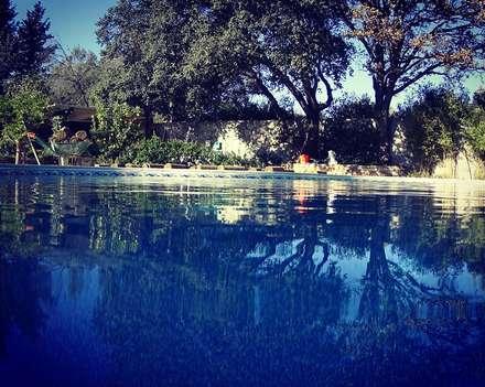 Садовые бассейны в . Автор – Sıdar Pool&Dome Yüzme Havuzları ve Şişme Kapamalar