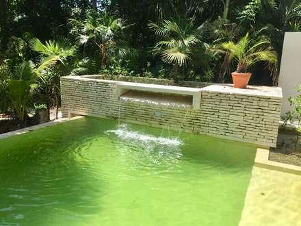 天然泳池 by axg arquitectos