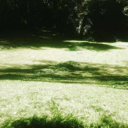 Garden Shed by Línea de tierra