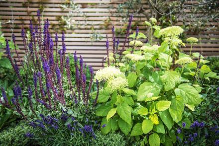 An outside entertainment area come rain or shine: mediterranean Garden by Kate Eyre Garden Design
