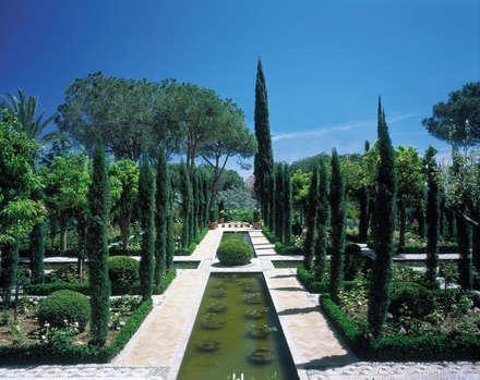 Garden Pond by Margarita Jiménez moreno