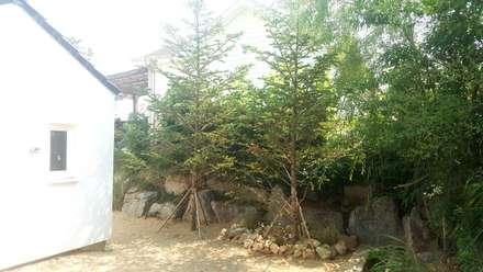 주택정원_강원도 횡성 단독주택 정원: (주)더숲의  정원