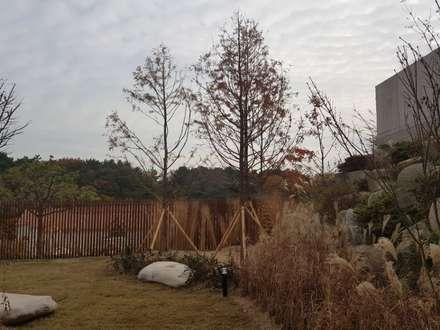 주택정원_부산 기장군 단독주택 정원 프로젝트: (주)더숲의  정원
