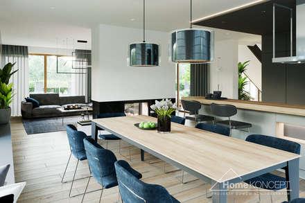 Projekt domu HomeKONCEPT 40: styl , w kategorii Jadalnia zaprojektowany przez HomeKONCEPT | Projekty Domów Nowoczesnych