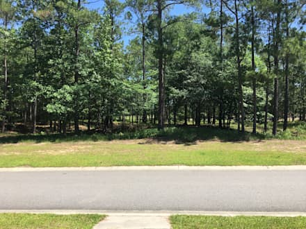 584 Hearthside Drive – 0.4 Acres: minimalistic Garden by Oakwood Ventures by Jones Pharr