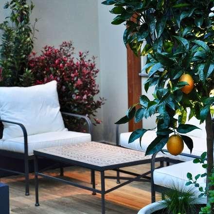 Diseño y construcción terraza Barcelona: Terrazas de estilo  de ésverd - jardineria & paisatgisme