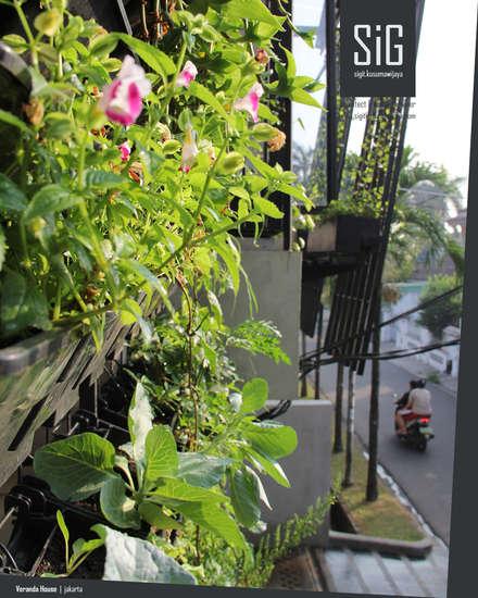 Front yard by sigit.kusumawijaya | architect & urbandesigner