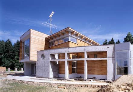 Декоративная стена из бетона: Загородные дома в . Автор – Роман Леонидов - Архитектурное бюро