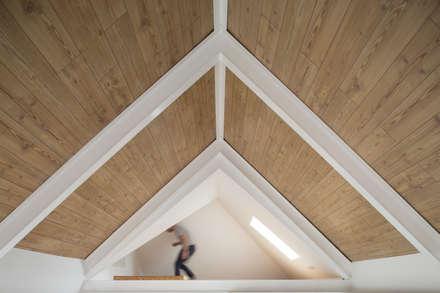 Двускатные крыши в . Автор – FERREIRARQUITETOS