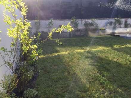Vista general del jadín: Jardines de estilo moderno por Deck and Garden