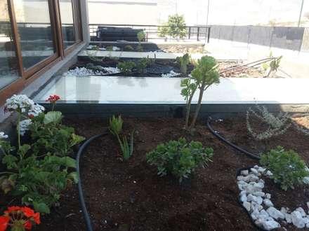 Construcción techo verde: Jardines con piedras de estilo  por Deck and Garden