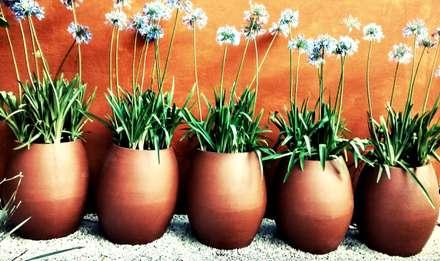 Composição de Vasos: Jardins campestres por lu alves paisagismo