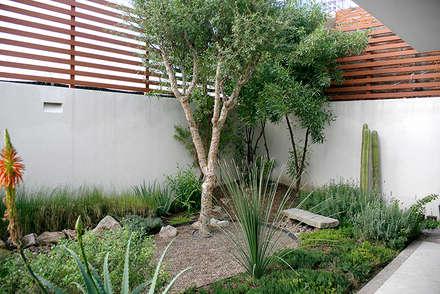 Jardins de pedras  por Hábitas