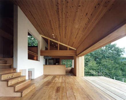 蓼科高原の週末住宅|内と外とがつながる空気感が漂い開放的となったリビング: 中庭のある家|水谷嘉信建築設計事務所が手掛けたリビングです。