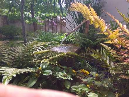 Jardines Japoneses -- Estudio de Paisajismo의  젠 스타일 정원