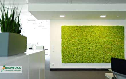 Gedung perkantoran by BAUMHAUS GmbH   Raumbegrünung Pflanzenpflege