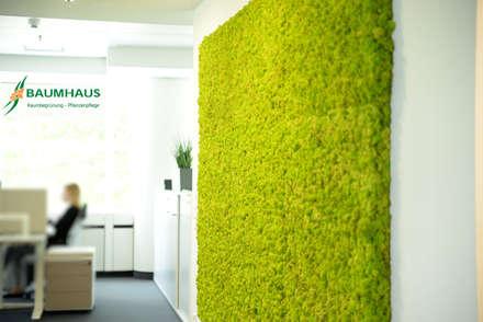 Clinics by BAUMHAUS GmbH   Raumbegrünung Pflanzenpflege