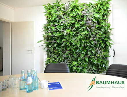 Conference Centres by BAUMHAUS GmbH   Raumbegrünung Pflanzenpflege