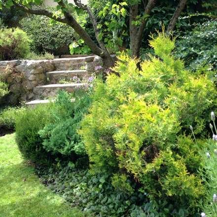 Detalle jardín : Jardines de estilo clásico por Bächler Paisajismo