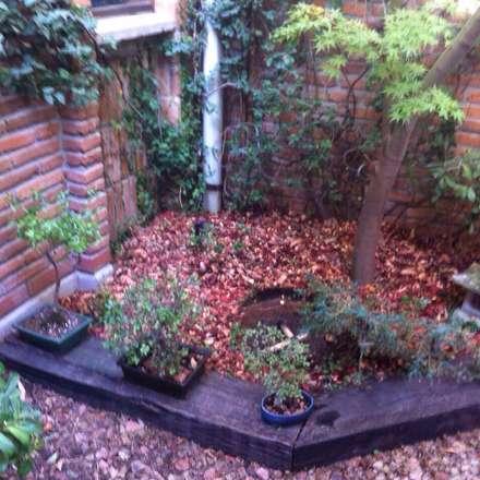 Zen garden by Bächler Paisajismo