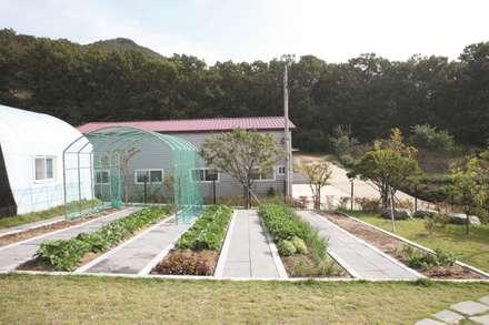 modern Garden by 하우스톡