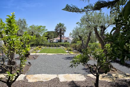 Jardim Contemporâneo com Áreas Espaçosas : Jardins de fachada  por Jardíssimo