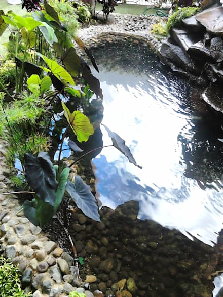 บ่อน้ำในสวน by Acua Natura