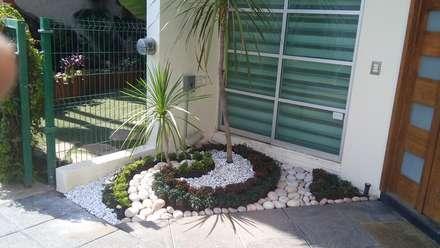 Rock Garden by Acua Natura