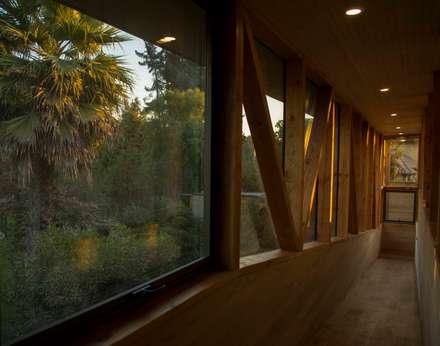 Vista al Jardin Segundo Piso: Jardines de estilo moderno por PhilippeGameArquitectos