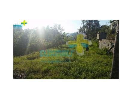 Terreno nas traseiras (2): Casas de campo  por Clix Mais