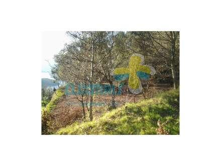 Vistas para a barragem (2): Casas de campo  por Clix Mais