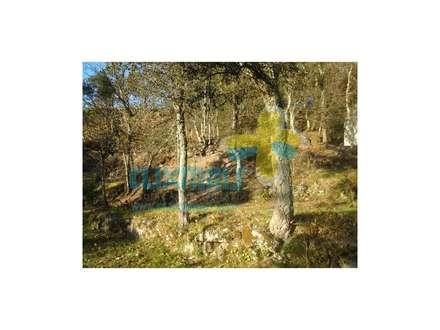 Terreno (2): Casas de campo  por Clix Mais