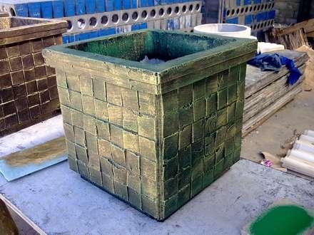 Garden pots:  Front yard by Buildart - Fibreglass Specialists