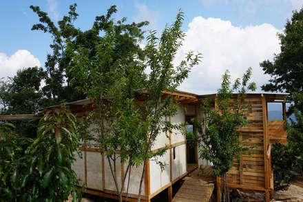 Log cabin by Juan Carlos Loyo Arquitectura