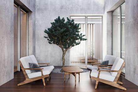 modern Conservatory by DZINE & CO, Arquitectura e Design de Interiores