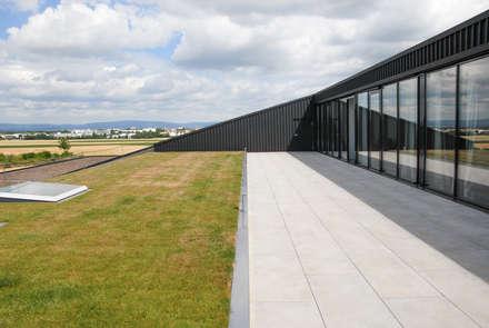 Edificios de oficinas de estilo  por SCHOYERER ARCHITEKTEN_SYRA