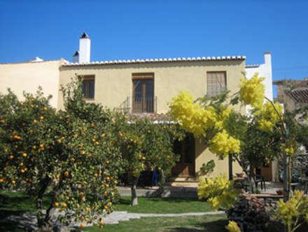 Front garden by Mirasur Proyectos S.L.
