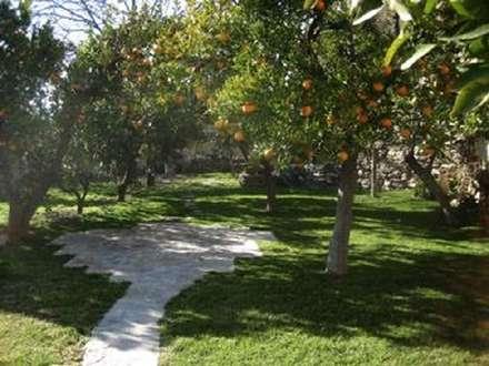 Jardín: Jardines con piedras de estilo  de Mirasur Proyectos S.L.