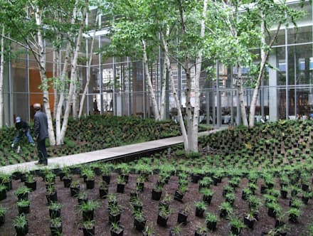 Espace vert intérieur :  Bürogebäude von Paul Marie Creation