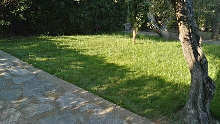 สวนหน้าบ้าน by Architetto Libero Professionista