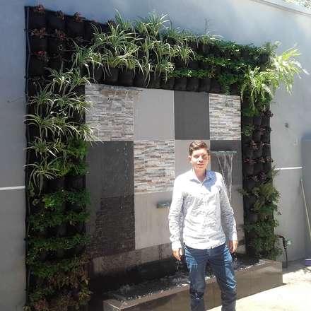 สวนหน้าบ้าน by Globo Natural