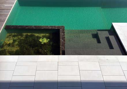 Biotop: minimalistischer Pool von Architekt Zoran Bodrozic