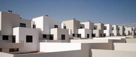Fachadas traseras: Casas unifamilares de estilo  de ÁVILA ARQUITECTOS