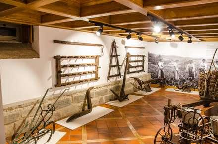 Музеи в . Автор – Brilumen