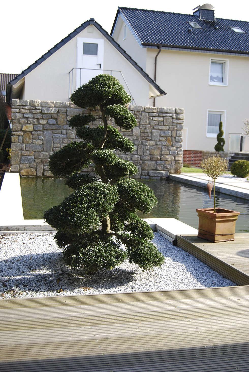 Eitelkeit Homify Garten Beste Wahl Taman Batu By Stein/garten/design E.k