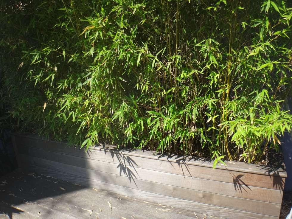 Garden Design: Jardin de style de style Méditerranéen par Nelumbo